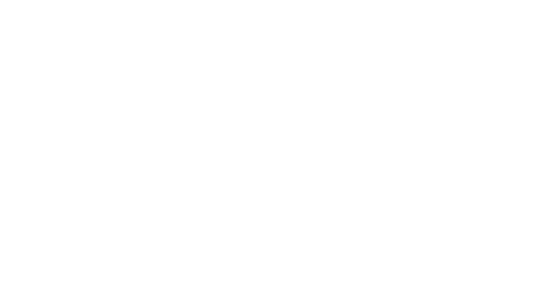 Elektro Vieweg GmbH & Co. KG